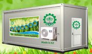 Гидропонное оборудование для выращивания готового корма. Жанаозен